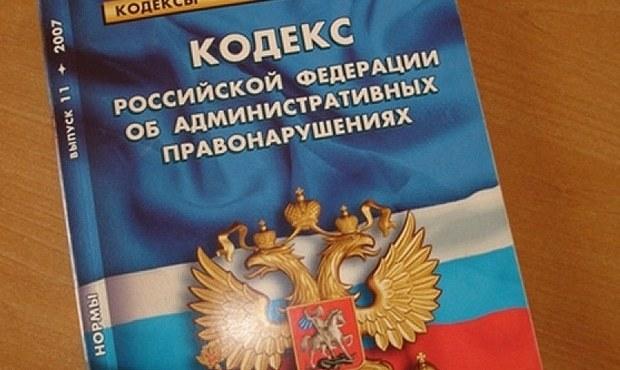 Незаконная банковская деятельность. Ст. 172 УК РФ в 2020 году: что это такое?