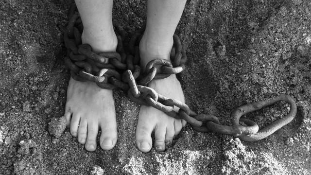 Условно-досрочное освобождение от отбывания наказания в 2020 году
